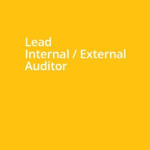 Lead Internal / External Auditor